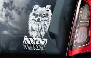 Pomerania-On-Board-Auto-Finestrino-Adesivo-Pom-Cane-Zwergspitz-Firmare-V03