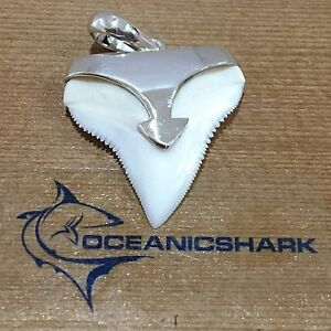 B39-27MM-BULL-SHARK-TOOTH-SILVER-NECKLACE-FOR-SALE-U-WILL-GET-ITEM-IN-PHOTO