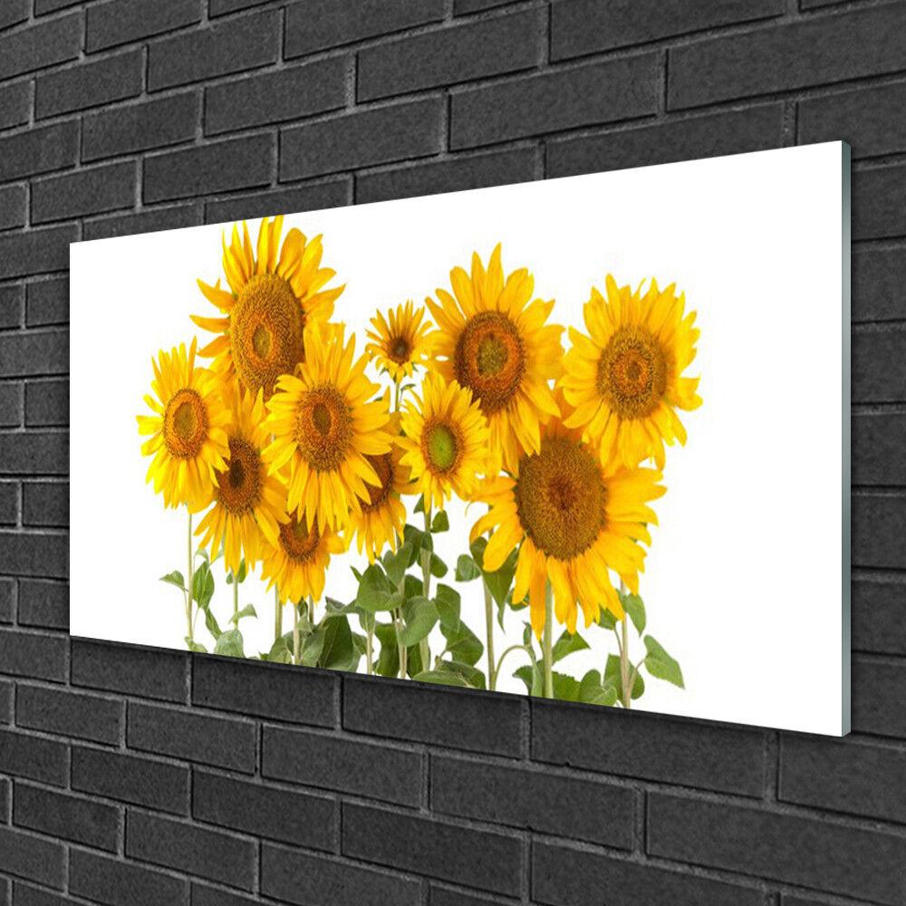 Image sur verre acrylique Tableau Impression 100x50 Floral Tournesols