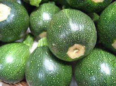 ZUCCHINI SEEDS, ROUND SQUASH, HEIRLOOM, ORGANIC, 25+ SEEDS, NON GMO, VEGETABLE
