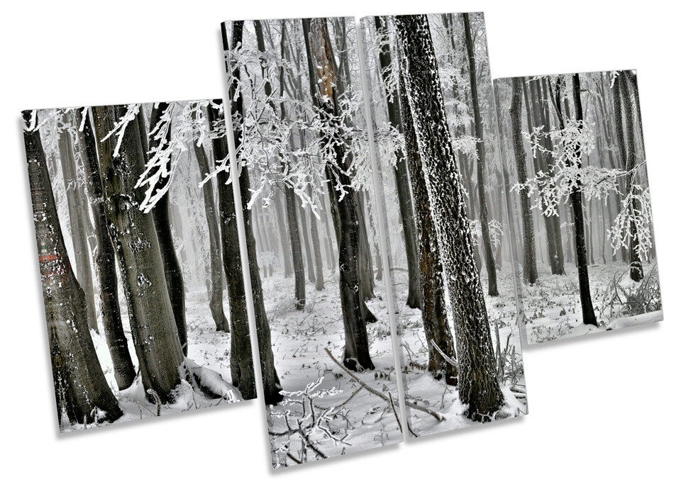 Árboles forestales invierno Paisaje de invierno forestales LONA pa rojo  arte Foto impresión de panel de múltiples 6449c7
