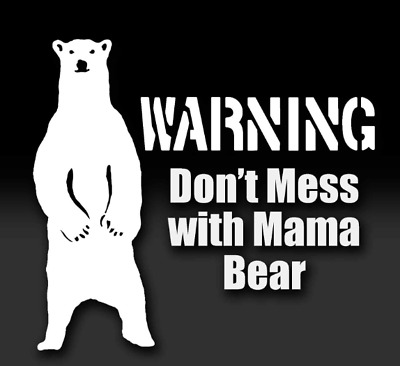 Mama Bear Mother with Bear Babies Family Vinyl Sticker Decals Camper Camping Adventure Awaits You Vinyl Sticker Decals