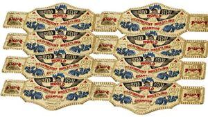 16 Piece World Lutte Champion Or Enfants Plastique Fête Courroies