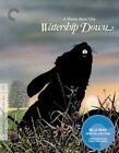 Watership Down Blu-ray Criterion Collection