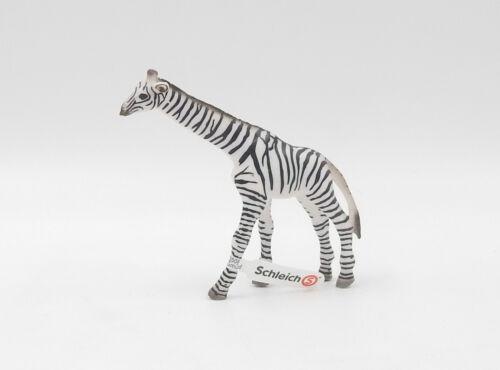 SCHLEICH Animale Motivo Zebra EDIZIONE SPECIALE 75 anni giraffe LIMITED EDITION NUOVO NEW
