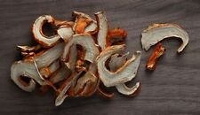 Dried lobster mushrooms from Canada 1 pound