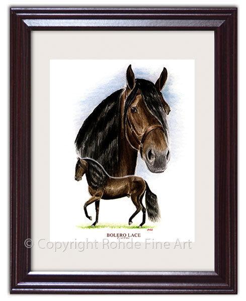 BOLERO LaCE - FAMOUS PASO FINO stallion FRAMED HORSE ART signed Rohde NICE