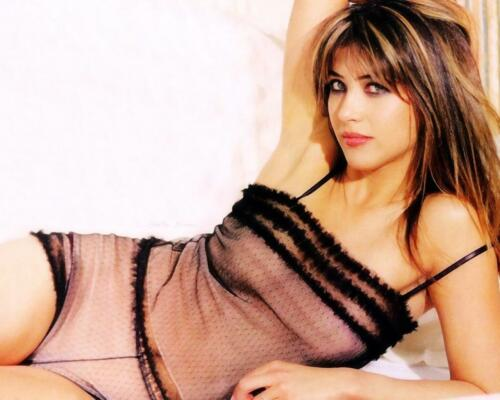 GLOSSY PHOTO PICTURE 8x10 Sophie Marceau Model With Lingerie