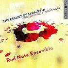 The Cellist of Sarajevo Chamber Music by David Wilde Audio CD