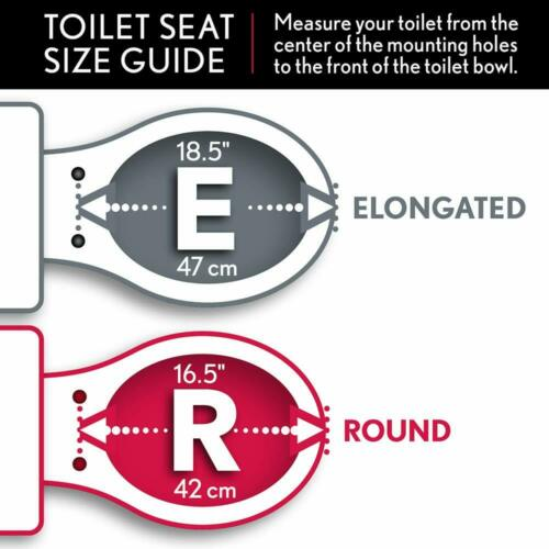 Best Economy White Toilet Seat Round Care for Your Seat traditional styling USA