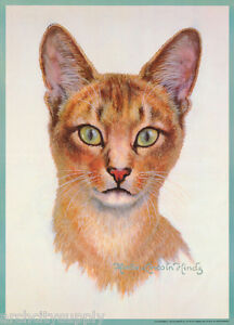 HINDS FREE SHIP#14-740  RP72 T POSTER:ART DRAWING ABYSSINIAN CAT by MARCIA L