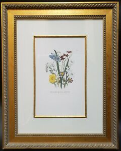 Hand Painted Flower Etching Art Print Custom Framed 29x23 Botanical Floral
