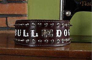 Bouledogue américain Bulldog anglais Oeb Collier clouté Killer Killer 8cm de large