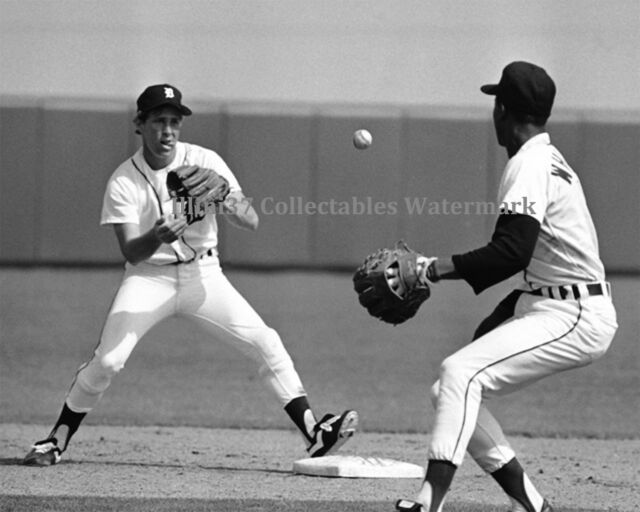 LOU WHITAKER ALAN TRAMMEL DETROIT TIGERS BASEBALL 8X10 GLOSSY PHOTO