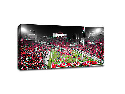 "Ohio State Buckeyes football - Touch of Color - 40"" x 22"" Canvas"
