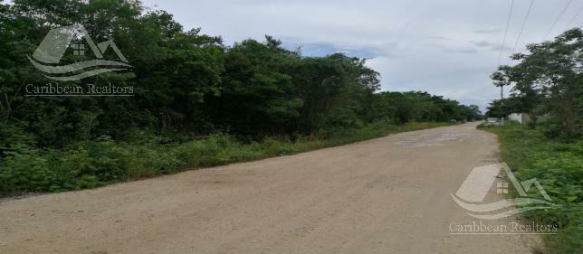 Terreno en Venta en Cancun Sm 307