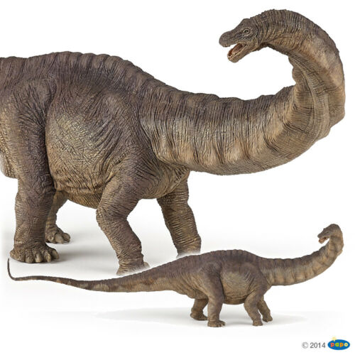 APATOSAURUS Figura Papo Dinosauri-modello 55039