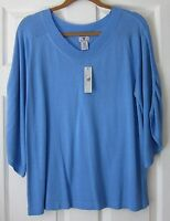 Womens Pullover V-neck Sweater By Worthington Jc Penneys W/tag Blue Sz L Mint