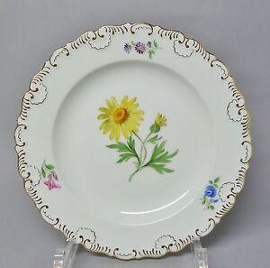 G260-Meissen-Kuchenteller-Blumendekor-Muschelkante-Gold-verziert-D-19-cm
