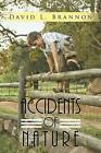 Accidents of Nature by David L. Brannon (Paperback, 2013)