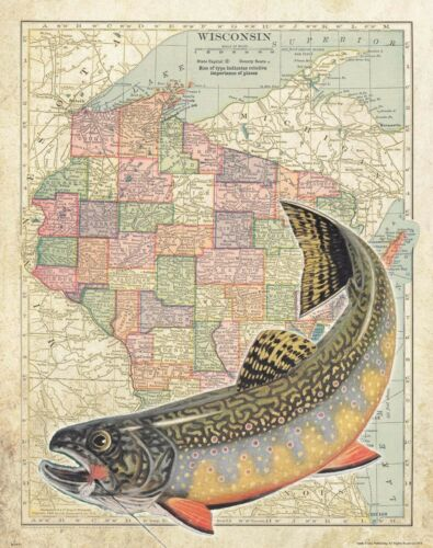 Brook Trout Unlimited Fly Fishing Club Wisconsin State Map Art Print Flies MAP15