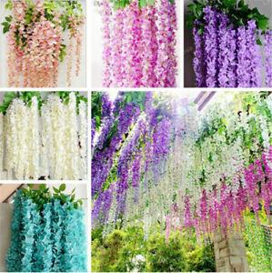10 Wisteria Flowers Tree Seeds Rare 6 Kinds Beautiful Bonsai