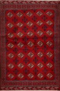 Geometric Bokhara Oriental Area Rug RED Wool Hand-knotted Traditional Carpet 4x6