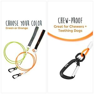 Steel Cable Safety Belt Mighty Paw Chew-Proof Dog Seat Belt Steel Braided Cord and Rock Climbers Carabiner