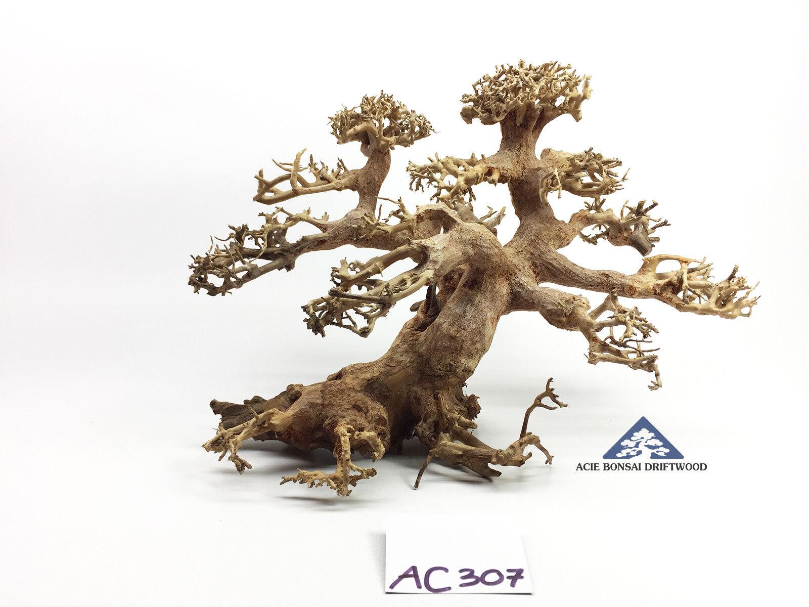 Bonsai Driftwood Tree for Aquarium Moss Fish Shrimp Planted Tank -Size M- AC307