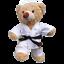 8-10-inch-25cm-TEDDY-CLOTHES-TUXEDO-SUPERBEAR-KARATE-PJ-SUPERBEAR-DINO-HOODIE thumbnail 4