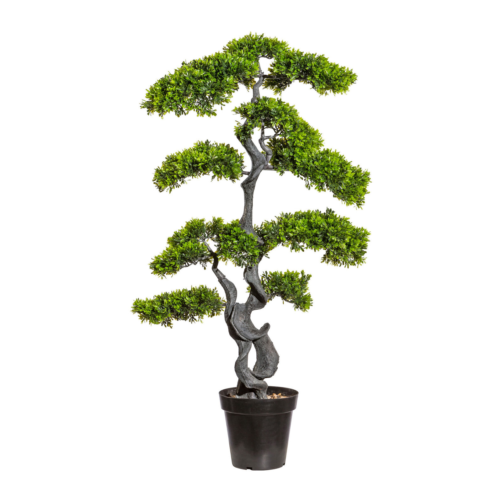 Kunstpflanze Bonsai Teeblatt grün, inklusive Kunststoff-Topf, Höhe ca. 125 cm