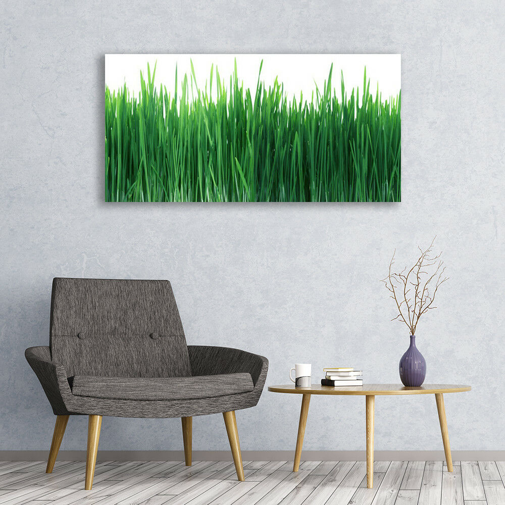Glass print Wall art 120x60 Image Picture Weed Nature Nature Nature 7e2228