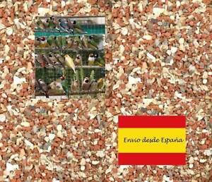 450-gramos-Grit-Calcio-para-canarios-periquitos-silvestres-loros-y-otros-pajaros