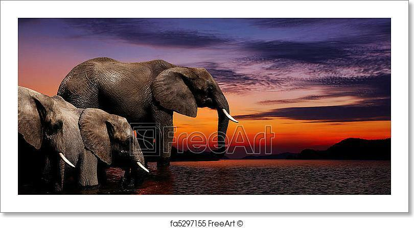Elephant Fantasy Art Print Home Decor Wall Art Poster
