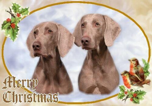 Weimaraner Dog A6 Christmas Card Design XWEIM-4 by paws2print