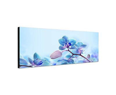 120x40cm Orchideen Panorama türkis Blumen elegant modern Leinwand Bild Sinus Art
