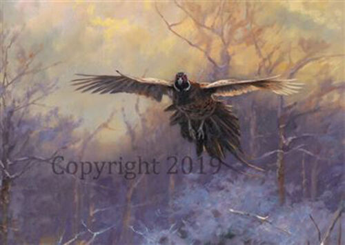 Pheasant in Flight Christmas Cards pack of 10 by John Trickett C593X