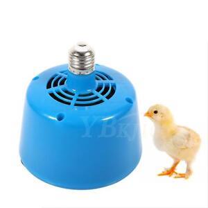 220V-Poultry-Heat-Lamp-Bulb-Warming-Light-For-Brooder-Piglets-Chicken-Pet-HOT