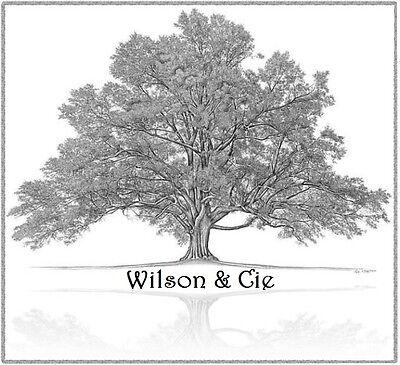 Wilson Cie