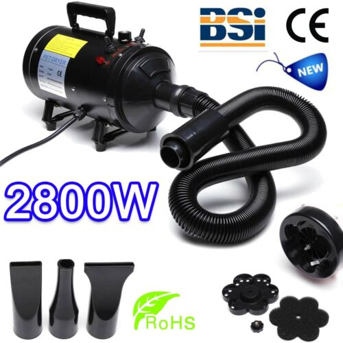 Stepless Speed Motorcycle Auto Car Truck Dryer Snow Blower 2800W Air Force