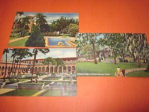3-Vintage-Unused-Postcard-Florida-Themed-3