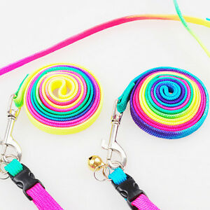 1pcs-Rainbow-Nylon-Harness-Laisse-Collier-Collier-Set-Chiot-Reglable-ChienOP