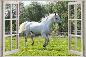 Huge-3D-Window-view-White-Horse-Horses-Gallop-Wall-Sticker-Mural-Decal-1114