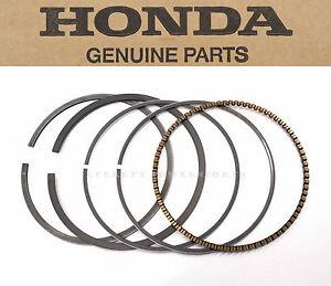 honda std bore piston rings ring kit      atc atc   trx   ebay