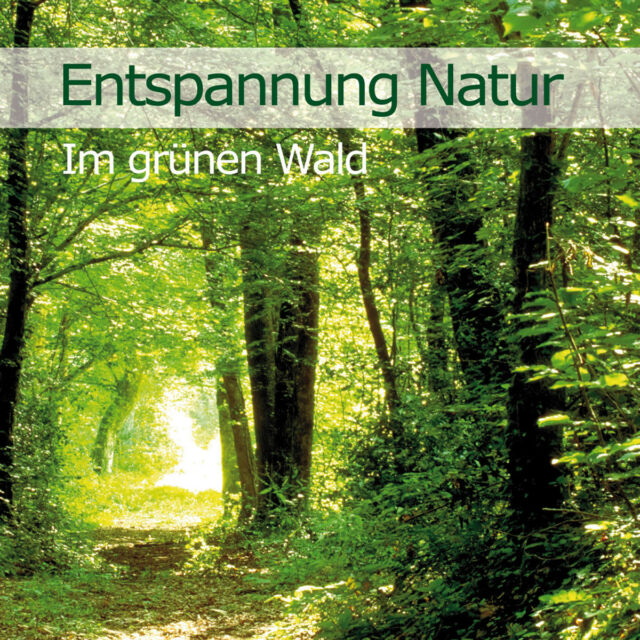 Vogelstimmen - Entspannung Natur - Im grünen Wald