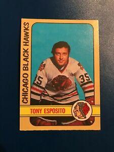 1972-73-O-Pee-Chee-OPC-Tony-Esposito-137-Look-Item-B