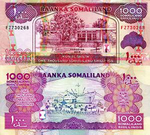 Somaliland CS1 1000 Shillings Year 2006 Uncirculated Banknote