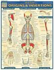 Muscle Origins and Insertions: Reference Guide by BarCharts (Other book format, 2003)