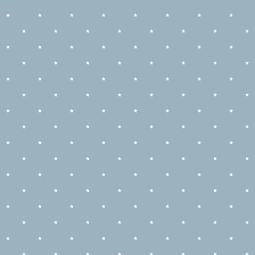 JR1104-jack n rose junior gris bleu étoiles galerie papier peint