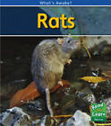 Rats by Patricia Whitehouse (Paperback, 2009)